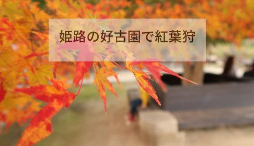 姫路の好古園に紅葉狩りに行ってきた。紅葉スポット好古園はとってもキレイに紅葉♪激込みの京都と違い平日の姫路はオススメ!