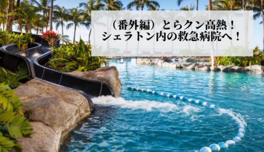 2020年1月ハワイ旅行(⑥番外編)「海外で急に高熱が出た場合に役立つ便利グッズ」と「オススメの海外旅行保険」を紹介!!
